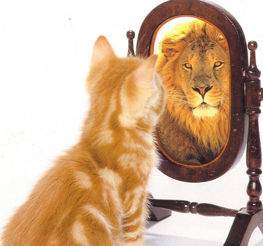 Повышаем уверенность в себе
