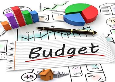 Особенности местного бюджетного процесса